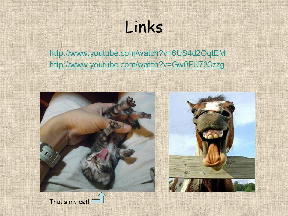 Links http://www.youtube.com/watch v=6US4d2OqtEM http://www.youtube.com/watch v=Gw0FU733zzg That's my cat!