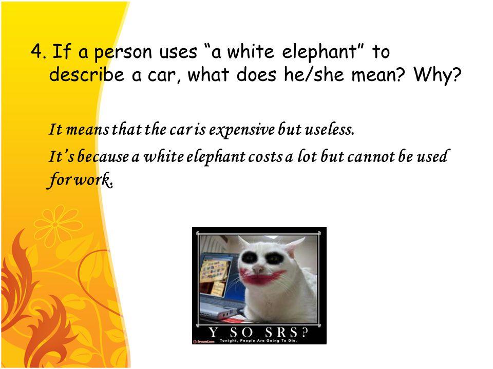 5. Please make a sentence by using a white elephant.