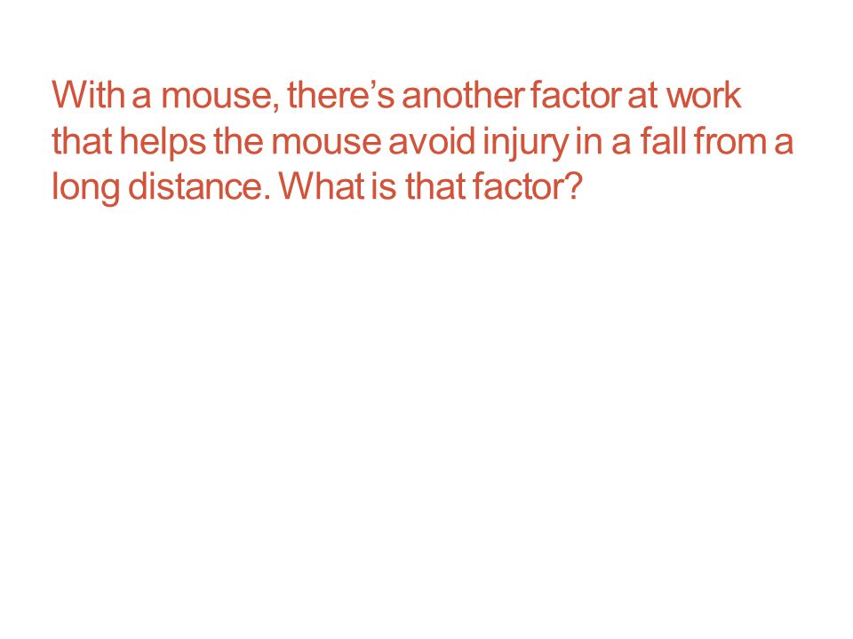 With a mouse, there's another factor at work that helps the mouse avoid injury in a fall from a long distance.