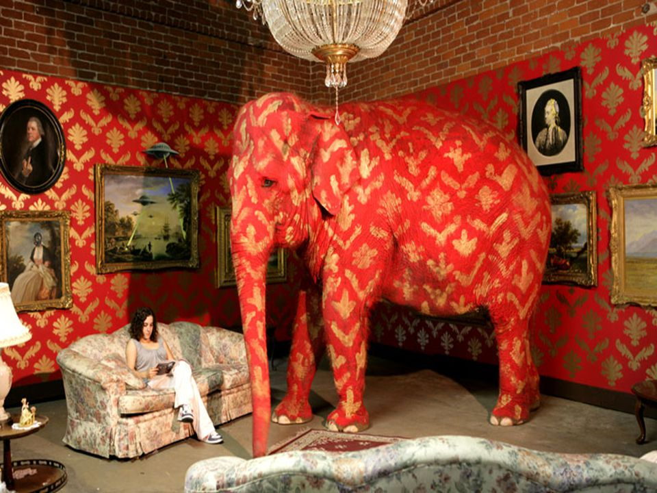 Banksy – graffiti artist & elephant wrangler The show is about the elephant in the room, the problems that we don t talk about.