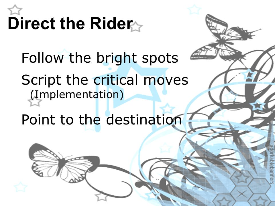 Direct the Rider Follow the bright spots Script the critical moves (Implementation) Point to the destination