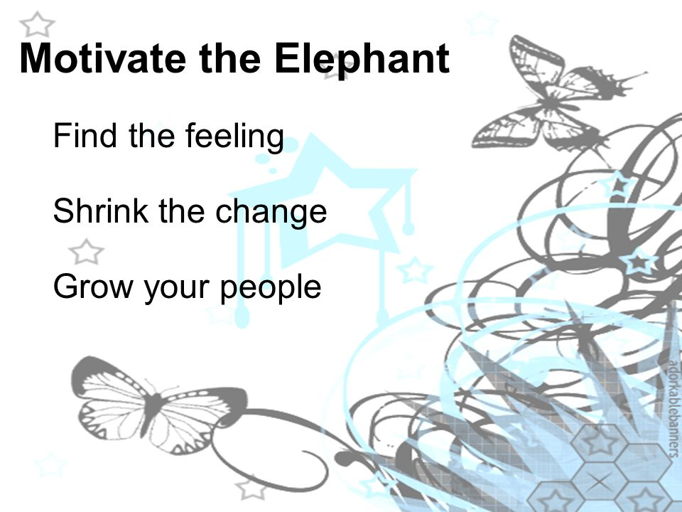 Motivate the Elephant Find the feeling Shrink the change Grow your people