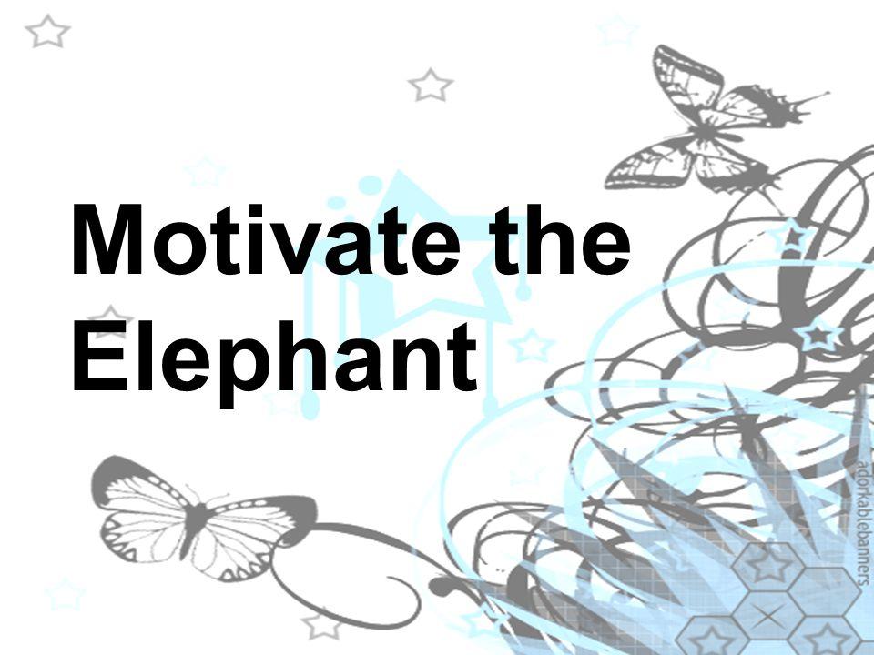 Motivate the Elephant