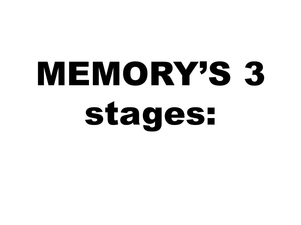 MEMORY'S 3 stages: