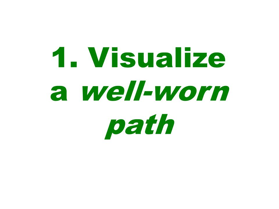 1. Visualize a well-worn path