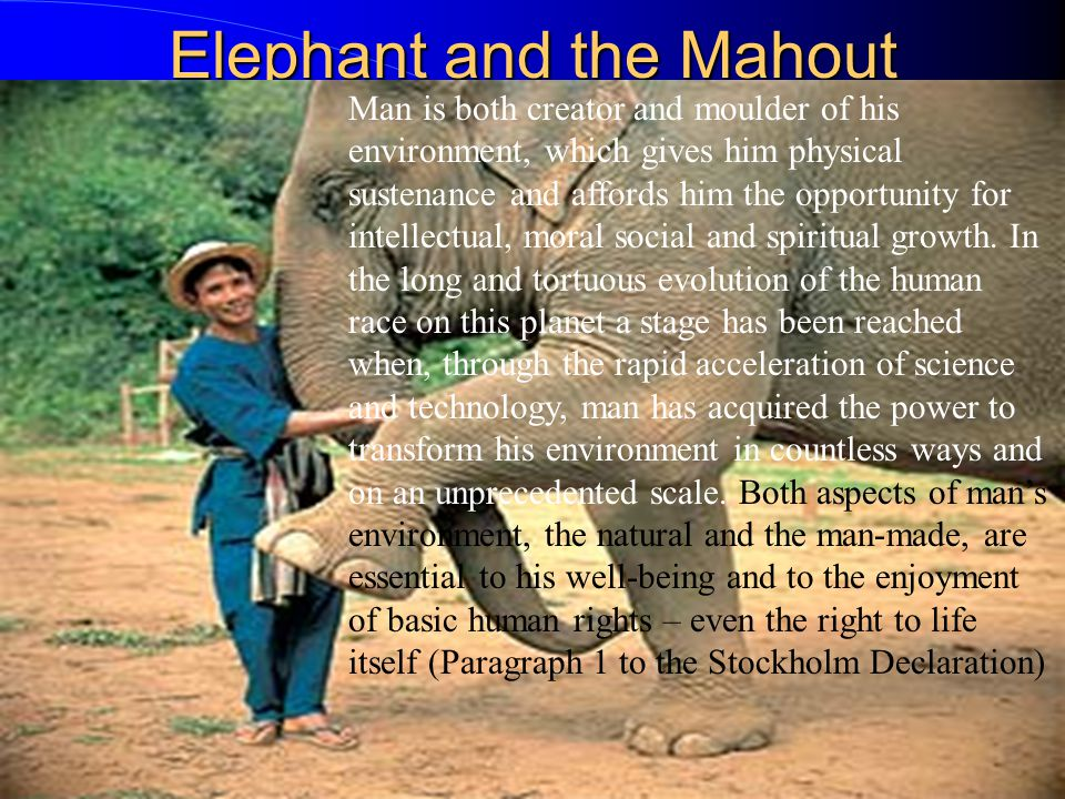 Elephant and the Mahout Man is both creator and moulder of his environment, which gives him physical sustenance and affords him the opportunity for intellectual, moral social and spiritual growth.