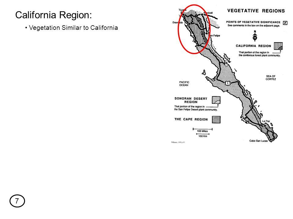 Vegetation Similar to California California Region: 7