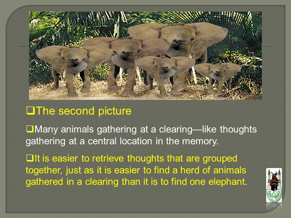  The second picture  Many animals gathering at a clearing—like thoughts gathering at a central location in the memory.