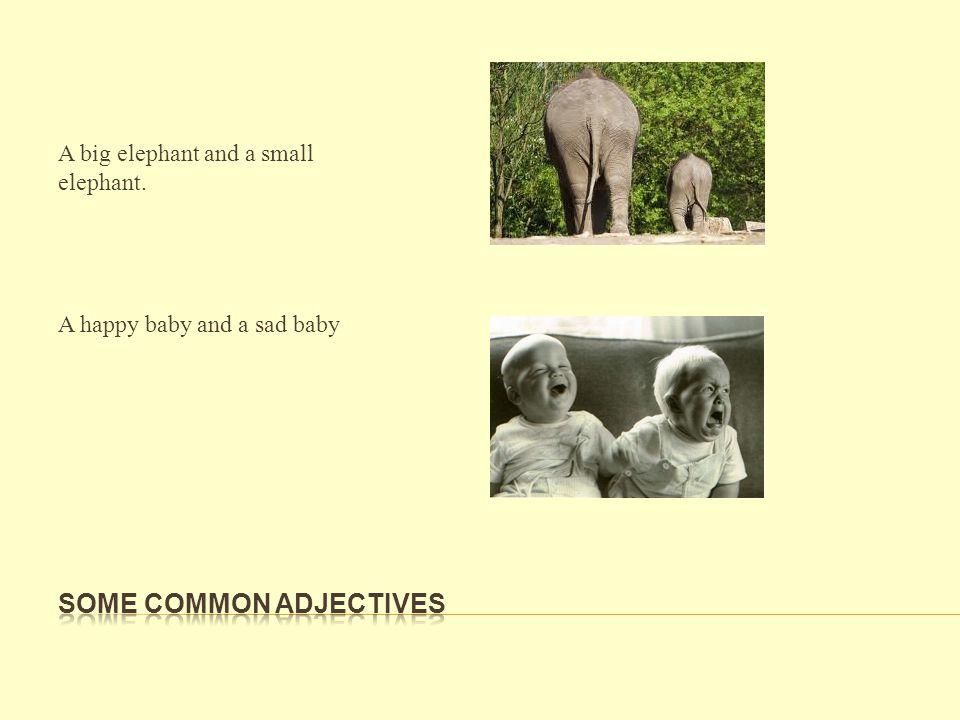 A big elephant and a small elephant. A happy baby and a sad baby