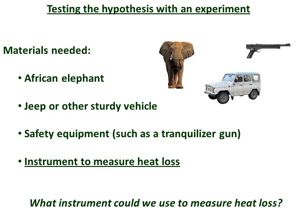 Testing the hypothesis with an experiment Materials needed: African elephant Jeep or other sturdy vehicle Safety equipment (such as a tranquilizer gun