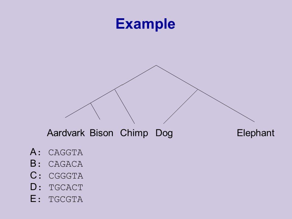 Example AardvarkBisonChimpDogElephant A : CAGGTA B : CAGACA C : CGGGTA D : TGCACT E : TGCGTA