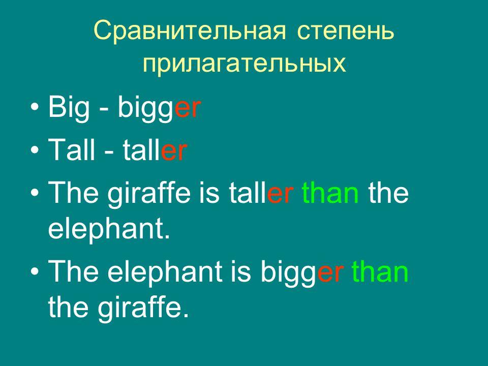 Сравнительная степень прилагательных Big - bigger Tall - taller The giraffe is taller than the elephant. The elephant is bigger than the giraffe.