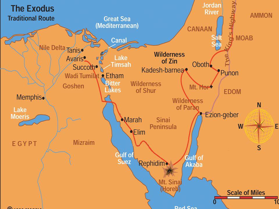 Pharoah's ways of dominating Jews u Multiplying of the seed and Pharaoh as resisting God's plan (Ex.
