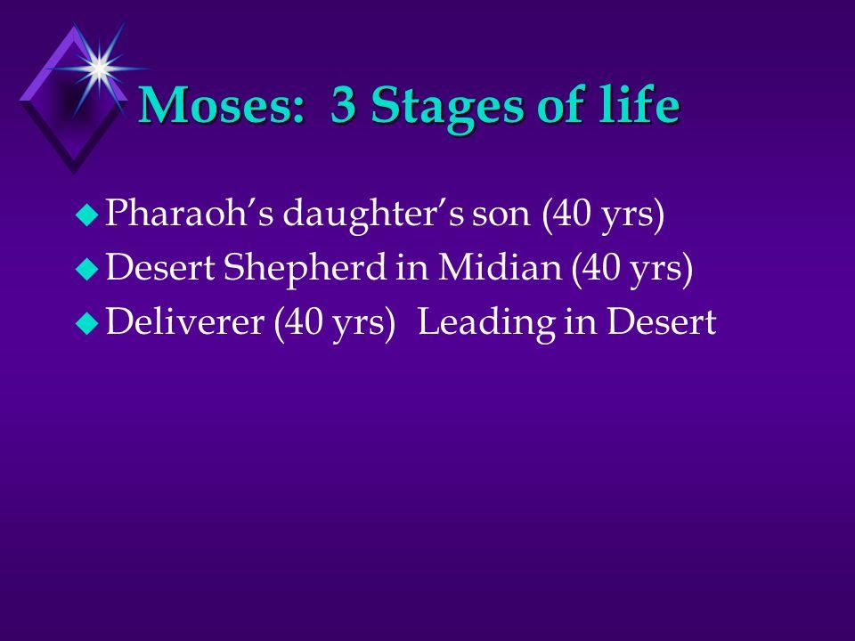 On 3 things in the ark u Ten Commandments u Aaron's budding rod u Pot of manna—What is it?