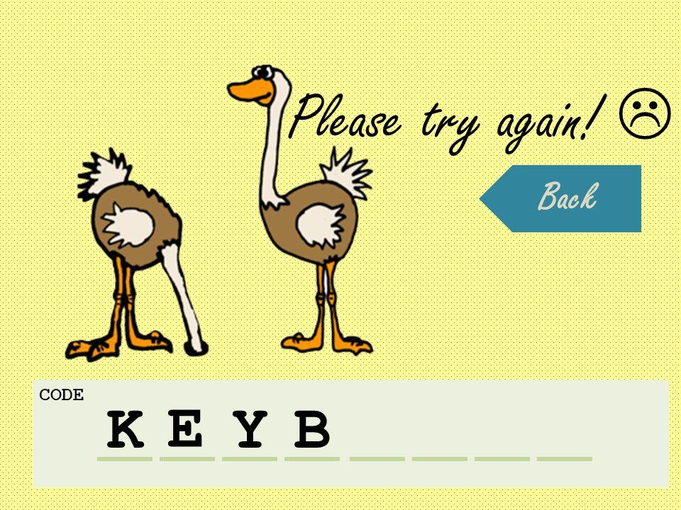 K CODE E YB Please try again!  Back