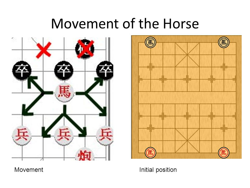 Movement of the Horse Initial positionMovement