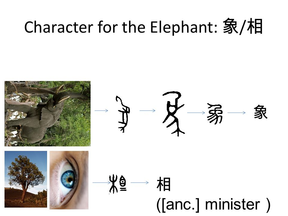 Character for the Elephant: 象 / 相 象 相 ([anc.] minister )