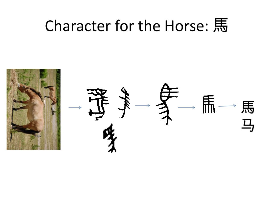 Character for the Horse: 馬 馬马馬马