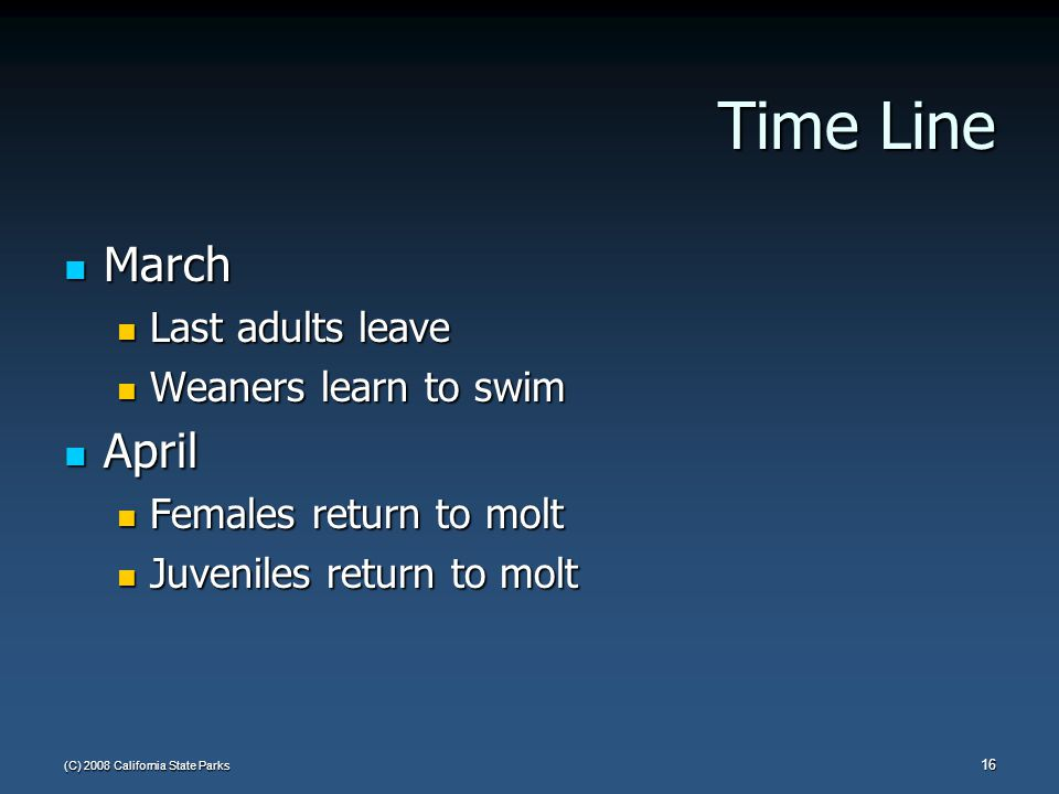 (C) 2008 California State Parks 16 Time Line March March Last adults leave Last adults leave Weaners learn to swim Weaners learn to swim April April Females return to molt Females return to molt Juveniles return to molt Juveniles return to molt