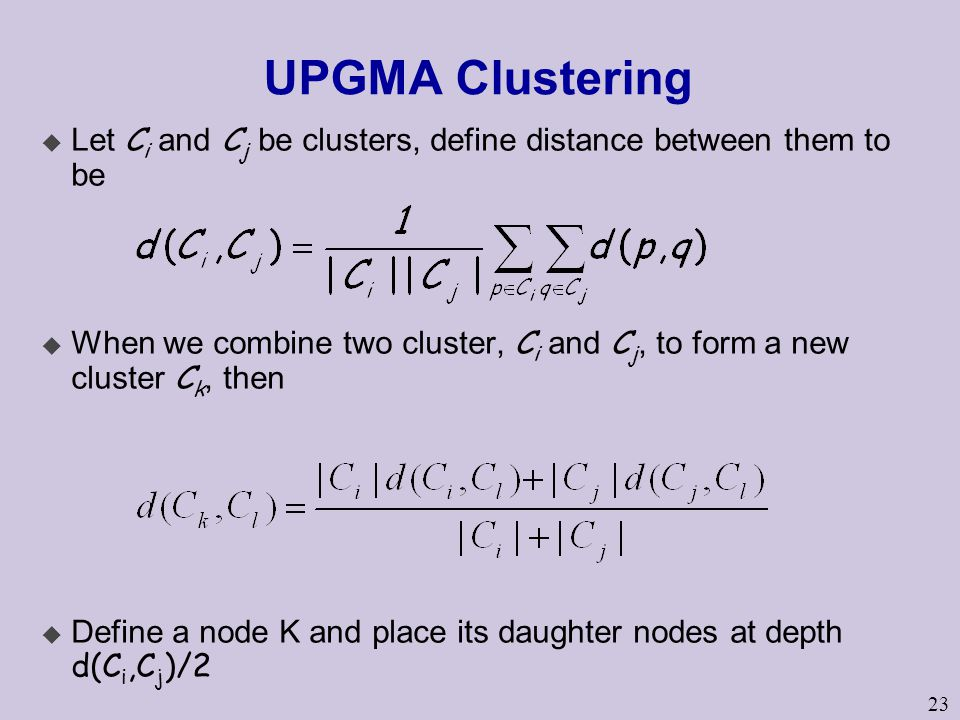 23 UPGMA Clustering  Let C i and C j be clusters, define distance between them to be  When we combine two cluster, C i and C j, to form a new cluster C k, then  Define a node K and place its daughter nodes at depth d(C i,C j )/2