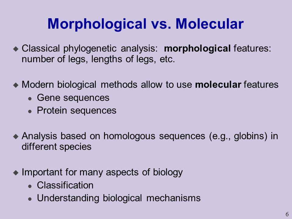 6 Morphological vs.