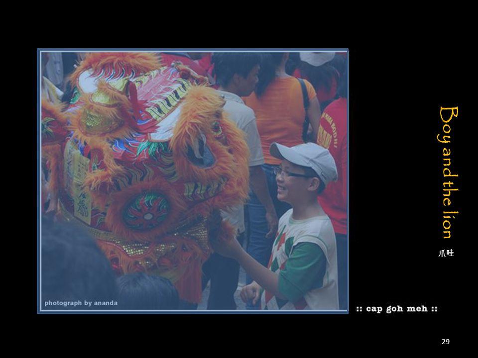 爪哇 Boy and the lion 29