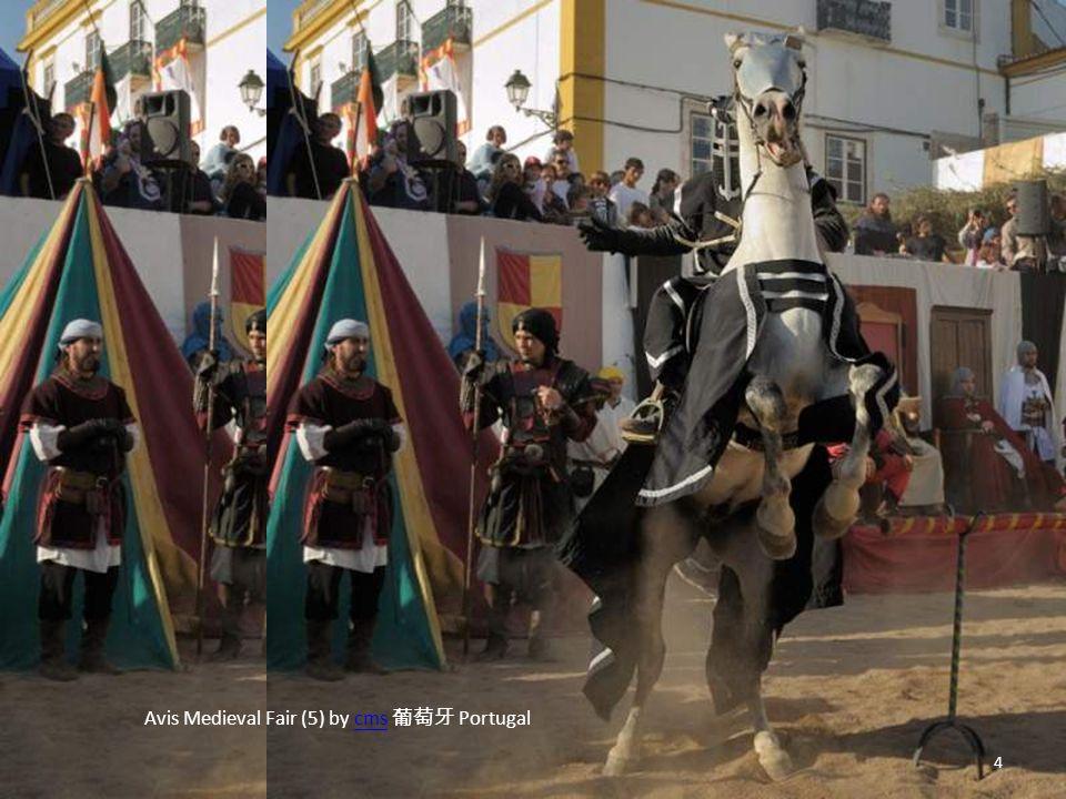 Avis Medieval Fair (5) by cms 葡萄牙 Portugalcms 4
