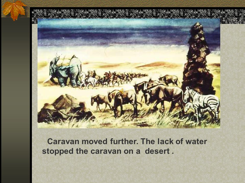 Caravan moved further. The lack of water stopped the caravan on a desert.
