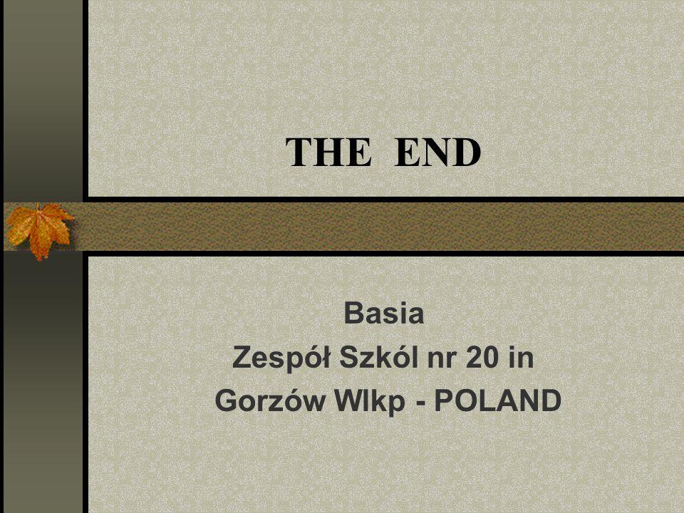 THE END Basia Zespół Szkól nr 20 in Gorzów Wlkp - POLAND