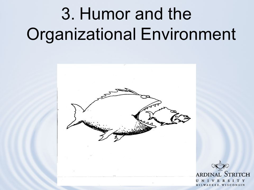 3. Humor and the Organizational Environment