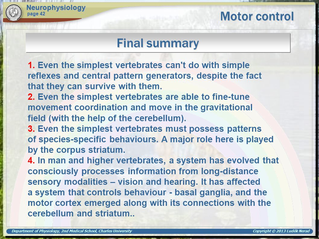 Department of Physiology, 2nd Medical School, Charles University Copyright © 2013 Luděk Nerad Motor control Neurophysiology page 42 Final summary 1. E
