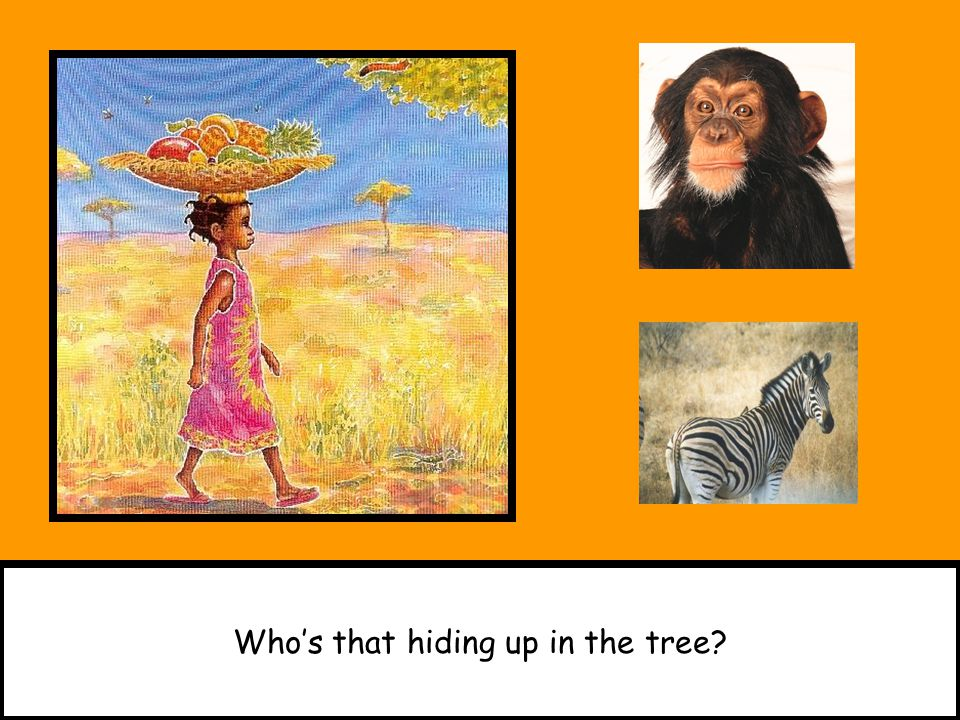 Who's that hiding up in the tree?