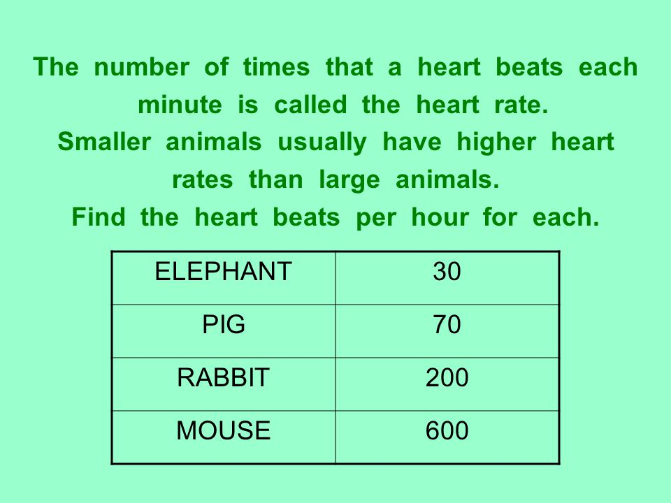 The number of times that a heart beats each minute is called the heart rate. Smaller animals usually have higher heart rates than large animals. Find