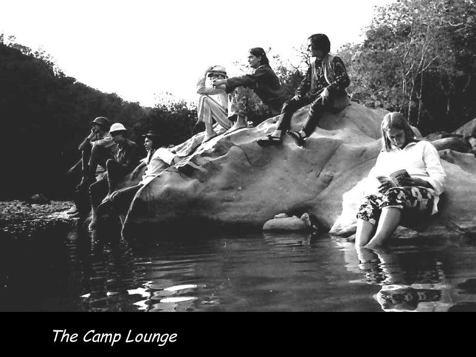 The Elephant Safari the trip highlight