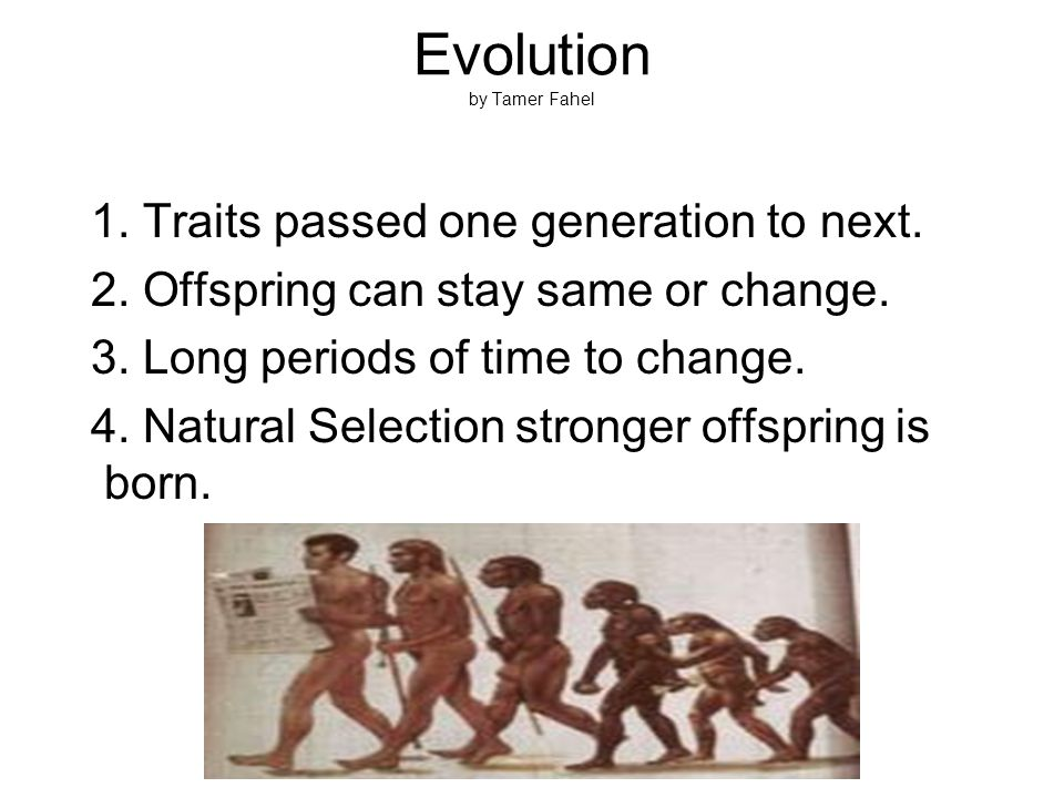 Evolution by Tamer Fahel 1. Traits passed one generation to next.