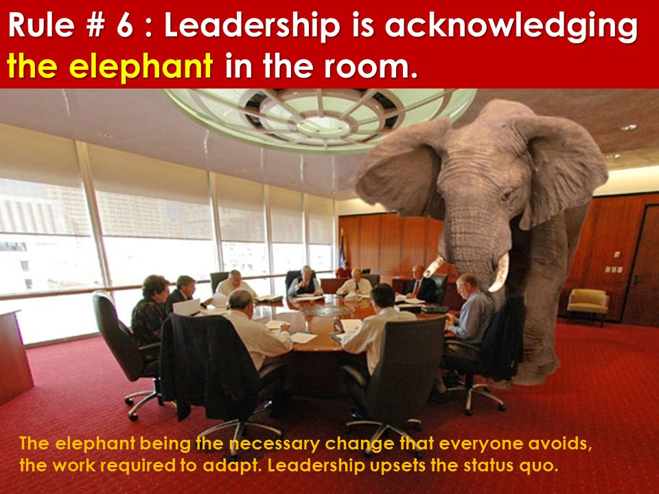 Rule # 6 : Leadership is acknowledging the elephant in the room. The elephant being the necessary change that everyone avoids, the work required to ad