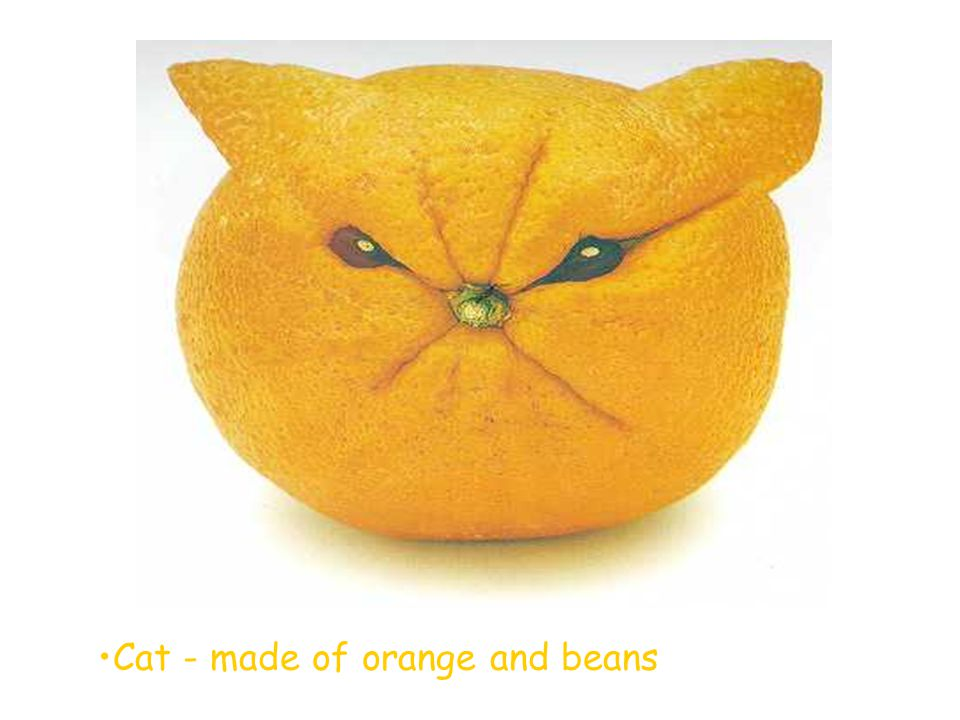 Cat - made of orange and beans