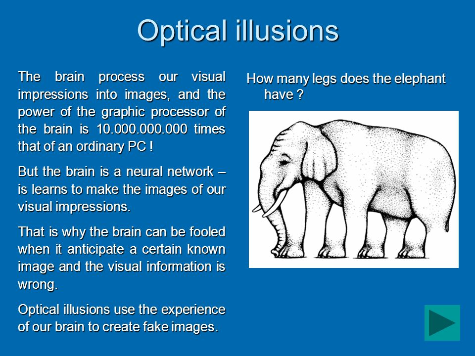 Optical illusions How many legs does the elephant have .