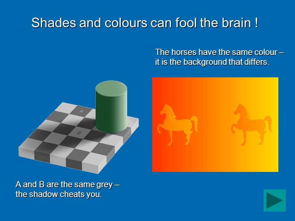Shades and colours can fool the brain .