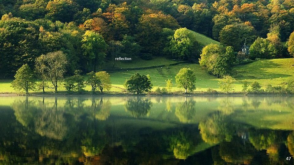 reflection 46