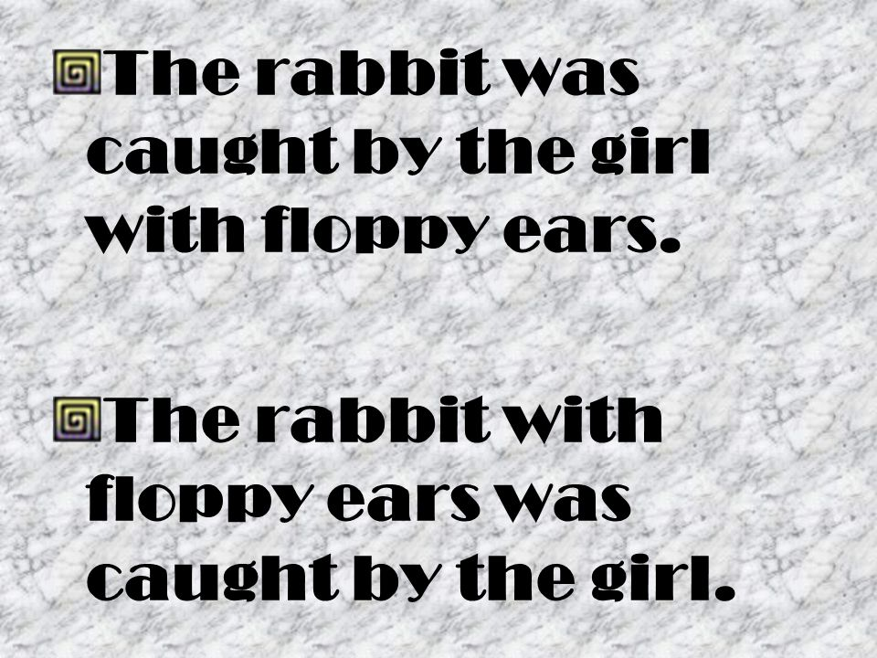 The rabbit was caught by the girl with floppy ears.