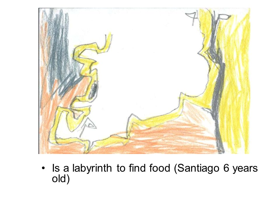 Is a labyrinth to find food (Santiago 6 years old)