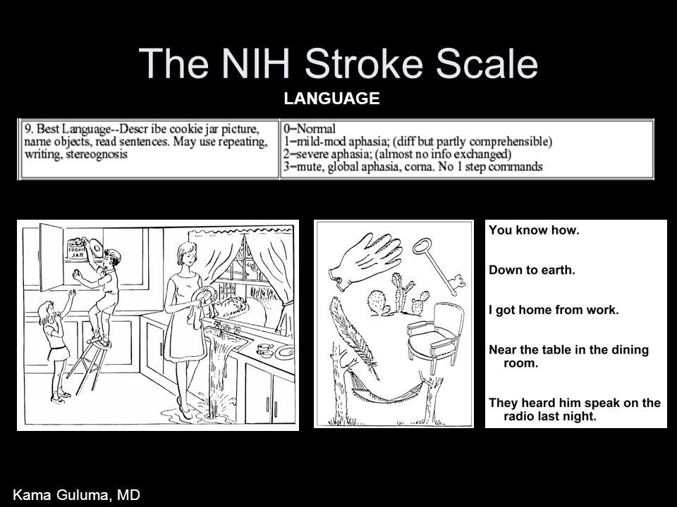 The NIH Stroke Scale LANGUAGE Kama Guluma, MD