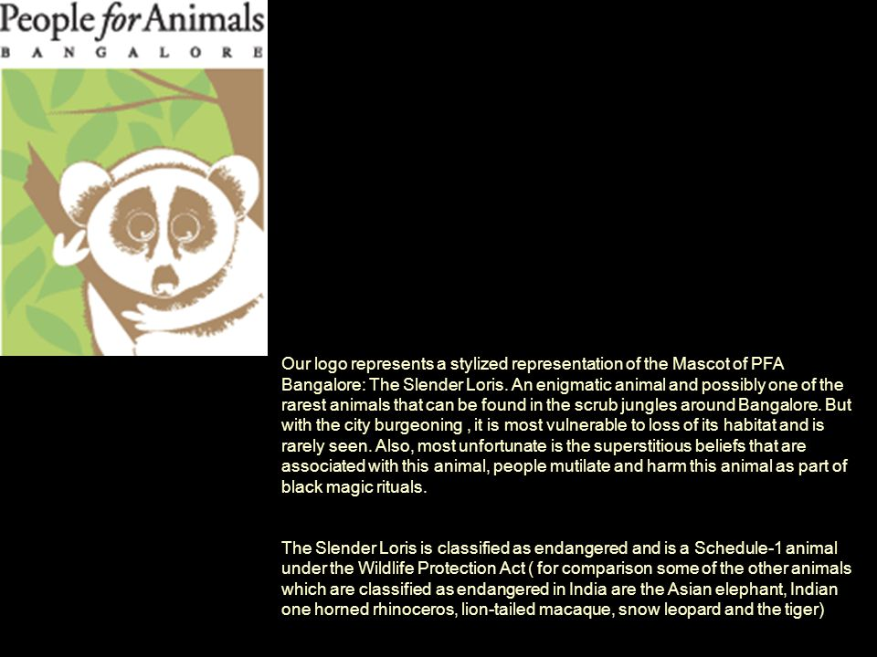 Our logo represents a stylized representation of the Mascot of PFA Bangalore: The Slender Loris.