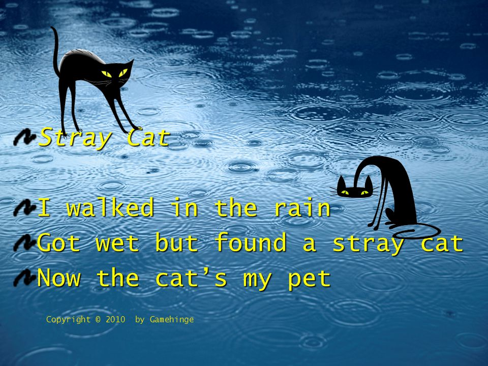 Copyright © 2010 by Gamehinge Stray Cat I walked in the rain Got wet but found a stray cat Now the cat's my pet