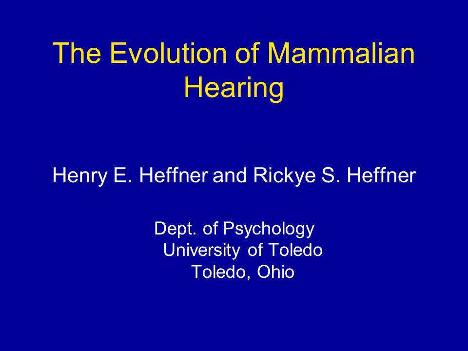 The Evolution of Mammalian Hearing Henry E. Heffner and Rickye S.