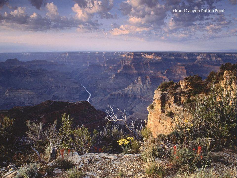 Grand Canyon Dutton Point