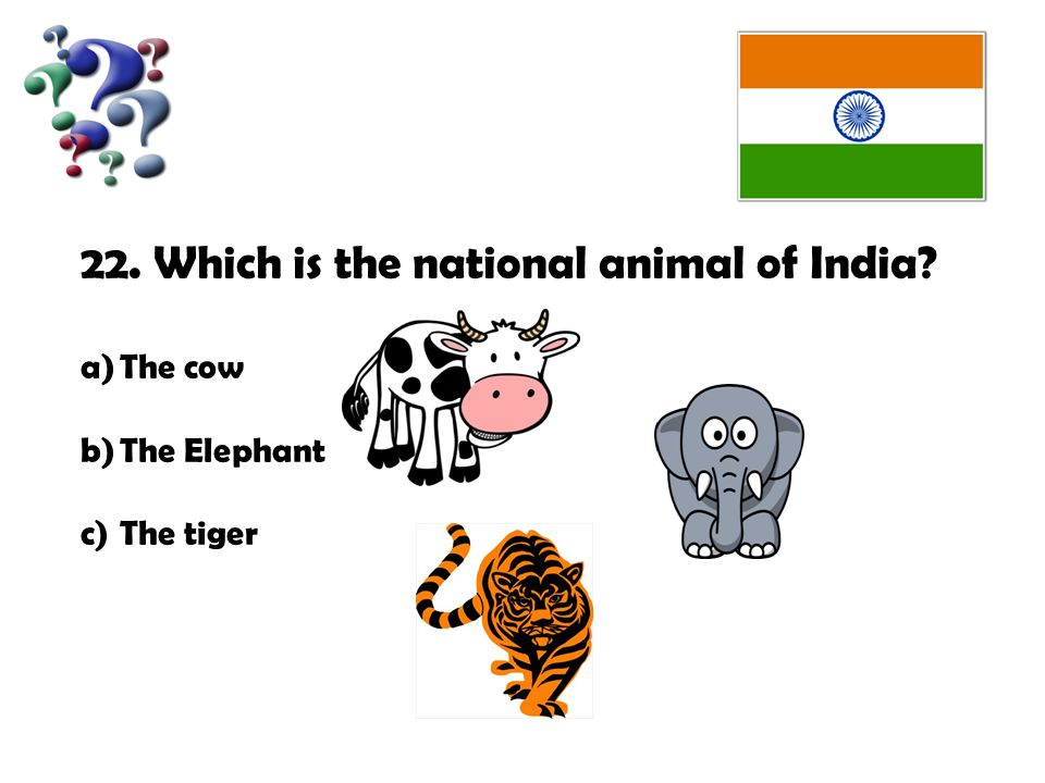 22. Which is the national animal of India a)The cow b)The Elephant c)The tiger