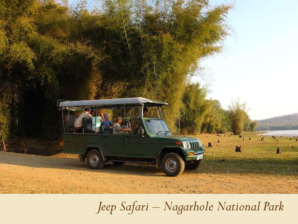 Jeep Safari – Nagarhole National Park
