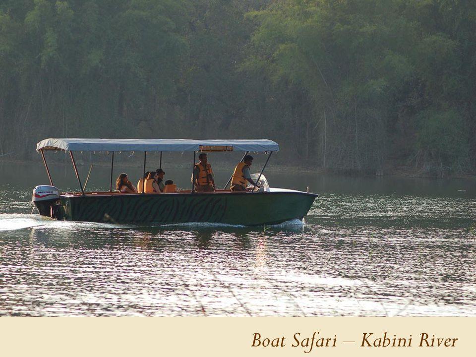 Boat Safari – Kabini River